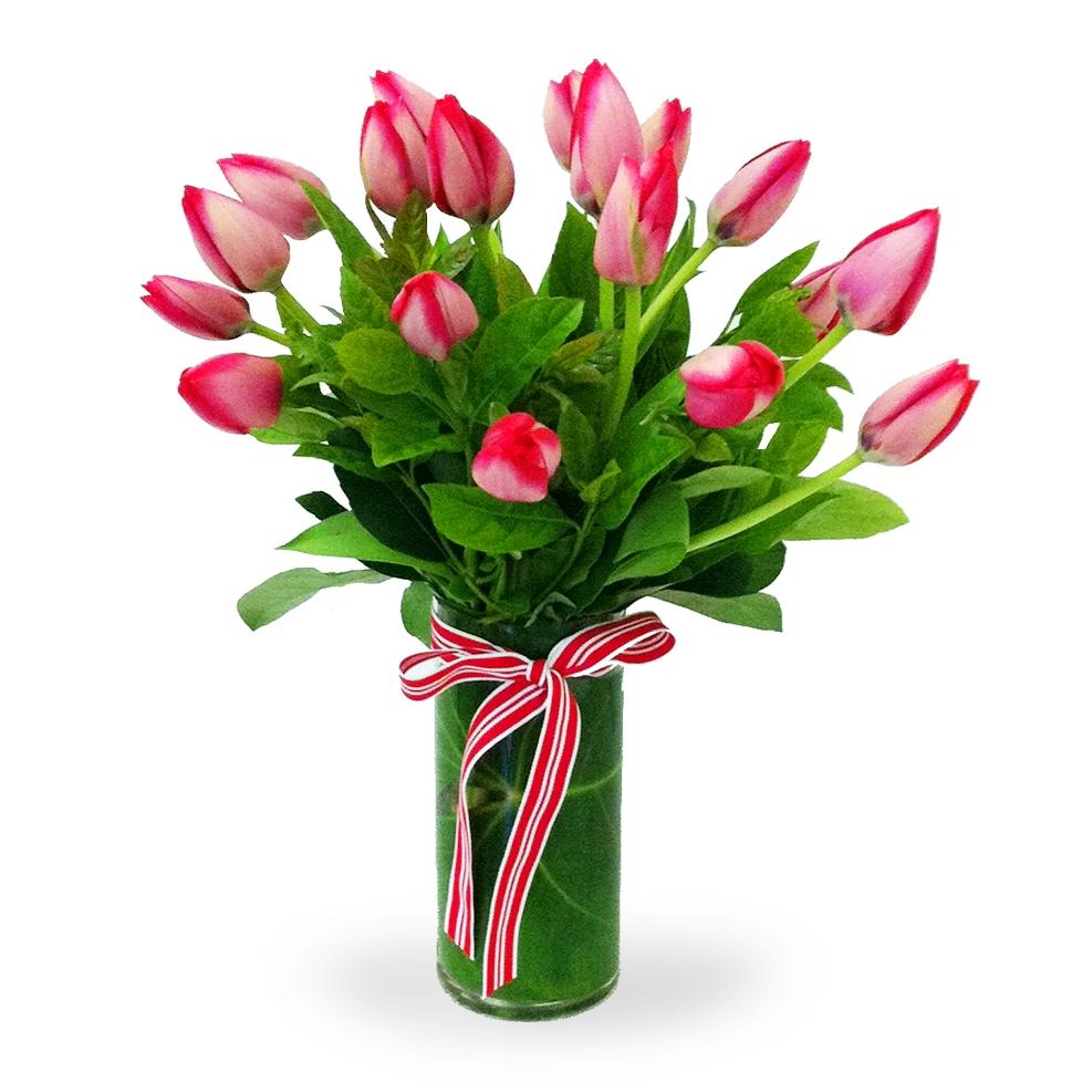 Alex 39 S Flowers
